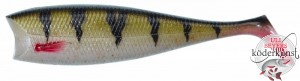 Illex - Nitro Shad UV - Perch